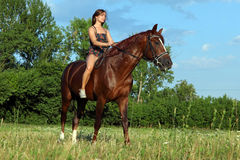 Młoda kobieta jedzie Trakehner konia Obrazy Royalty Free