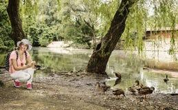 Młoda kobieta karmi grupy kaczka w miasto parku Obraz Royalty Free