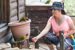 Młoda kobieta karmi papugi przy Australijskim zoo Gan Guru w kibuc Nir David w Izrael, Zdjęcie Stock