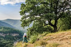 Młoda kobieta w kapeluszu i zielonej sukni siedzi pod drzewem i spojrzeniami przy górami fotografia royalty free