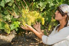 Młoda kobieta, winogradu hodowca w winnicy, Zdjęcie Stock