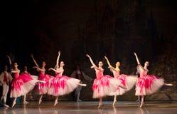Młode tancerz baleriny w klasowym klasycznym tanu, balet Zdjęcia Stock