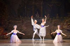Młode tancerz baleriny w klasowym klasycznym tanu, balet Zdjęcie Royalty Free