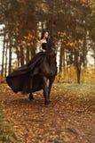 Młodej dziewczyny czarownica czarna wdowa w czarnej sukni i tiarze galopuje horseback na fryzyjczyka koniu w ranek mgle fotografia royalty free