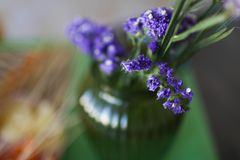 Młodej kobiety kwiaciarnia robi owocowemu bukietowi Obrazy Stock