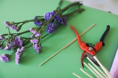 Młodej kobiety kwiaciarnia robi owocowemu bukietowi Zdjęcie Royalty Free