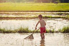 Młody agriculturist znalezienie dla ryba Obraz Royalty Free