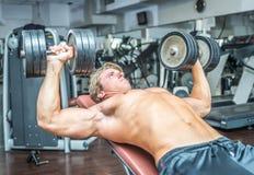 Młody bodybuilder trenuje mocno Obraz Stock