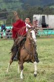 Młody kowboj na konia plecy w Ekwador miotania lasso Zdjęcie Stock