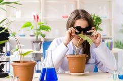M?ody pi?kny biotechnologia chemik pracuje w lab zdjęcie stock