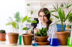 M?ody pi?kny biotechnologia chemik pracuje w lab zdjęcie royalty free
