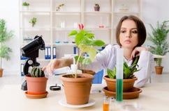 M?ody pi?kny biotechnologia chemik pracuje w lab fotografia royalty free
