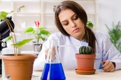 M?ody pi?kny biotechnologia chemik pracuje w lab fotografia stock