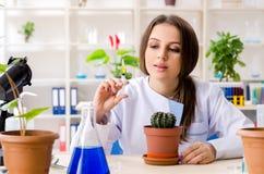 M?ody pi?kny biotechnologia chemik pracuje w lab zdjęcia stock