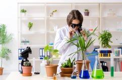 M?ody pi?kny biotechnologia chemik pracuje w lab zdjęcia royalty free