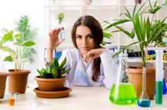 M?ody pi?kny biotechnologia chemik pracuje w lab obrazy stock