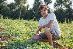 Młody rolnik sprawdza jego arbuza pole przy organicznie eco gospodarstwem rolnym Zdjęcie Royalty Free