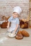 Młody szef kuchni Zdjęcia Royalty Free