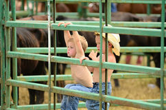 Młodzi kowboje Obraz Royalty Free