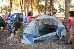 Młodzi przyjaciela utworzenia namioty na polu Fotografia Stock