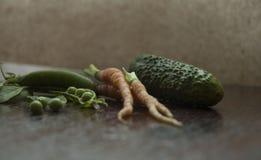 Młodzi warzywa Zdjęcie Royalty Free
