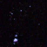 M42 Orion Nebula Royaltyfri Foto