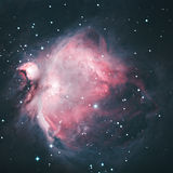M42 - Orion Nebula. Explanation: The Great Nebula in Orion, an immense, nearby starbirth region, is probably the most famous of all astronomical nebulas. Here Stock Images