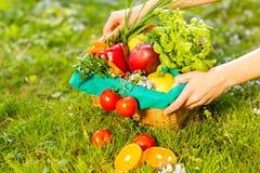 M?os f?meas que guardam a cesta de vime com vegetais e frutos, fim acima fotos de stock royalty free