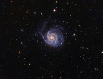 M101 Pinwhell Galaxy Royalty Free Stock Photo