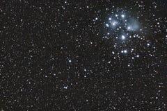 M45 - Pleiades Fotografia Stock