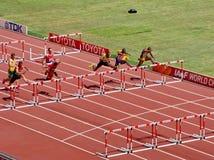 110m przeszkody wstępne w 2015 IAAF atletyka Światowym mistrzostwie w Pekin obrazy stock