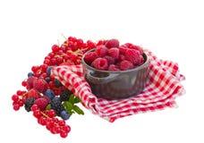 Mûr de baies rasberry et autres Photos stock