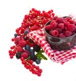 Mûr de baies rasberry et autres Images stock