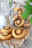 M?rdegskakan champignon-formade kakor p? ett tr?br?de och i en exponeringsglaskrus royaltyfri fotografi