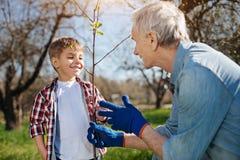 Mûrissez le petit-fils de enseignement d'agriculteur comment planter des arbres images stock