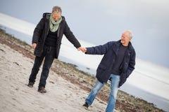 Mûrissez les couples heureux marchant sur la plage en automne Image libre de droits