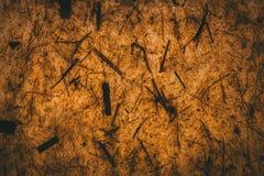 M?rk brun textur och bakgrund som g?ras med ?teranv?nt papper Brown abstrakt textur vektor illustrationer