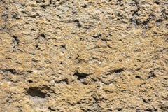 M?rk brunt kritiserar bakgrund eller textur Kan anv?ndas som en bakgrund arkivfoto