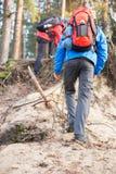 Męscy backpackers wycieczkuje w lesie Obrazy Stock