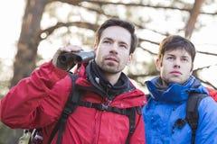 Męscy wycieczkowicze z lornetkami w lesie Fotografia Stock