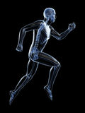 Męski biegacz Zdjęcie Royalty Free