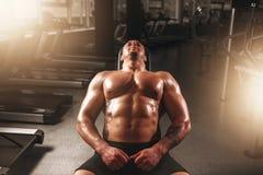 Męski bodybuilder szkolenie z dumbbells w gym Fotografia Royalty Free