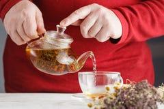 Męski dolewanie Od przejrzystego szklanego teapot nalewa czarnej herbaty w gla Obraz Royalty Free
