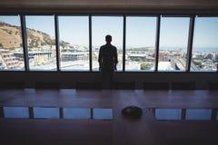 Męski dyrektor wykonawczy patrzeje przez okno Zdjęcie Stock