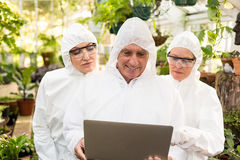 Męski naukowiec dyskutuje z kolegami nad laptopem Fotografia Stock