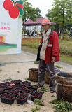 Męski owocowego hodowcy bubla bayberry Zdjęcie Royalty Free