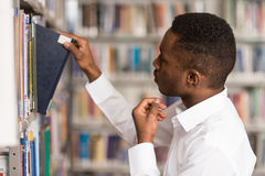 Męski student collegu W bibliotece Obraz Stock