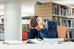 Męski student uniwersytetu w bibliotece Obraz Royalty Free