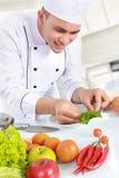 Męski szef kuchni robi garnirunkowi Zdjęcia Royalty Free