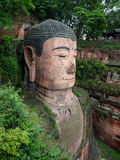 The 71m tall Giant Buddha (Dafo), carved out of the mountain in. The 8th century CE in Leshan, Sichuan province, China Stock Photography